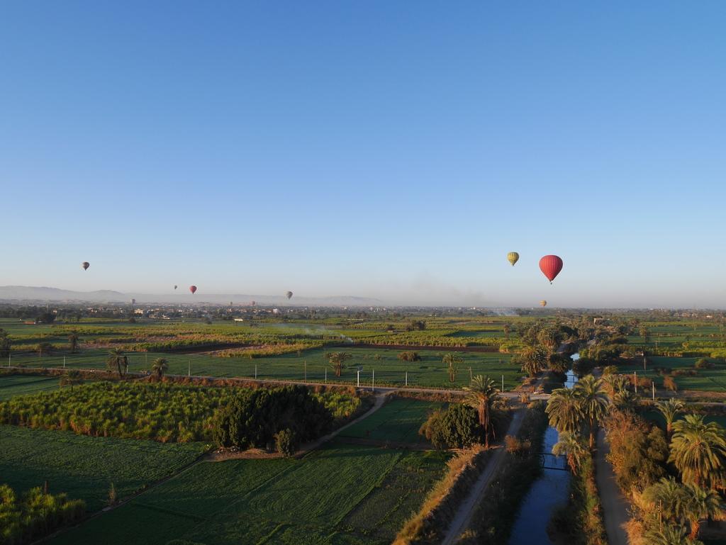 路克索-熱氣球 18.JPG
