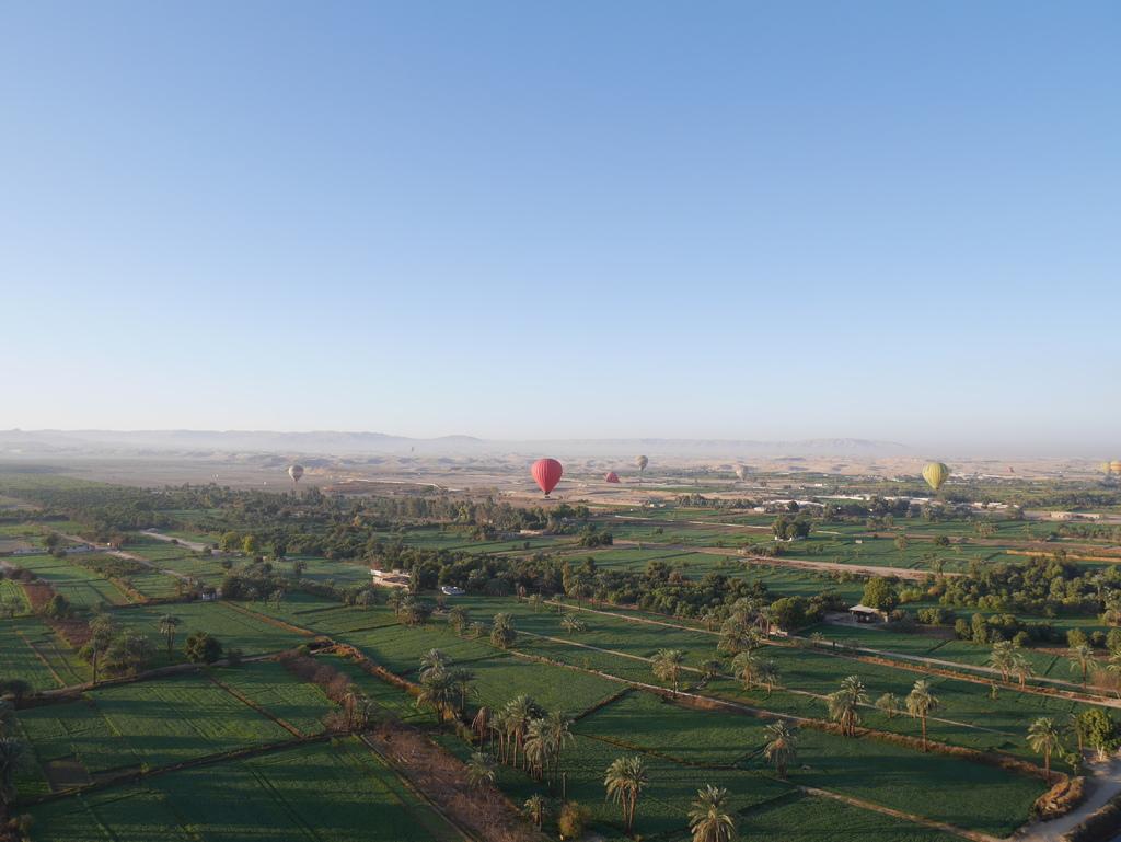 路克索-熱氣球 21.JPG