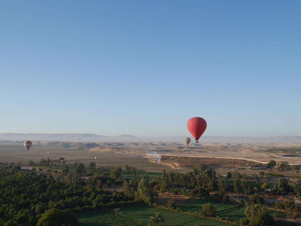 路克索-熱氣球 24.JPG