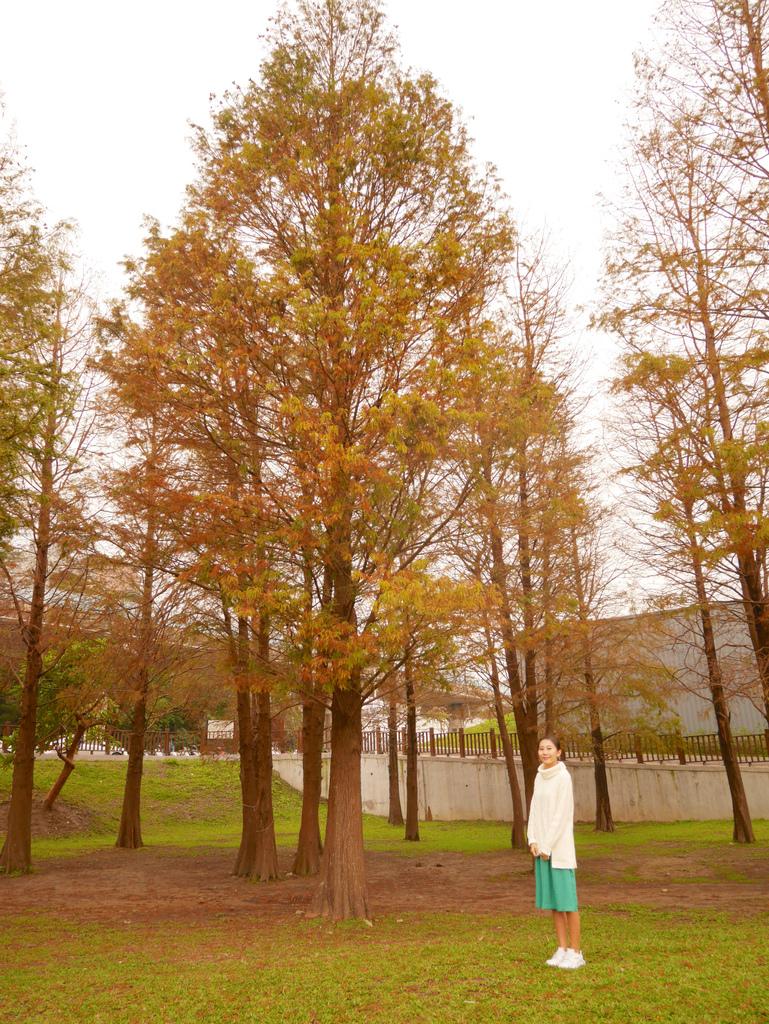 大湖公園 02.jpg