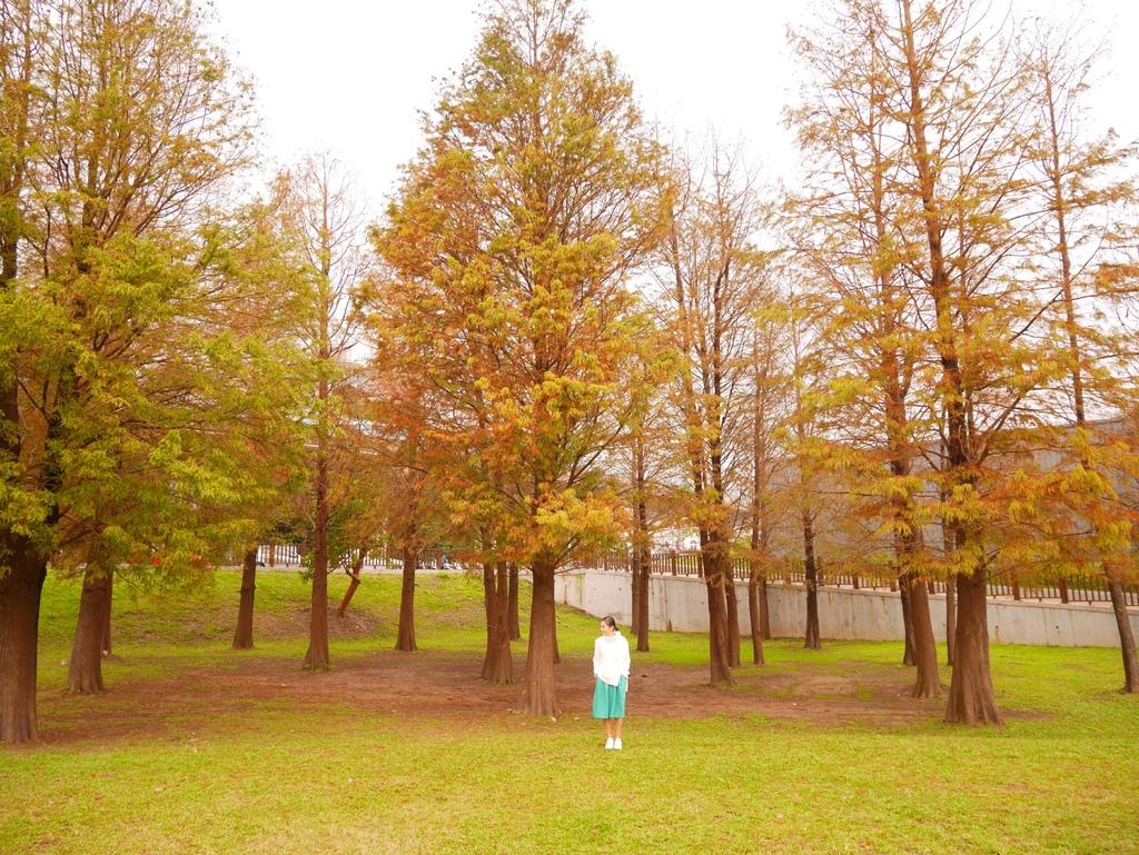 大湖公園 04.jpg