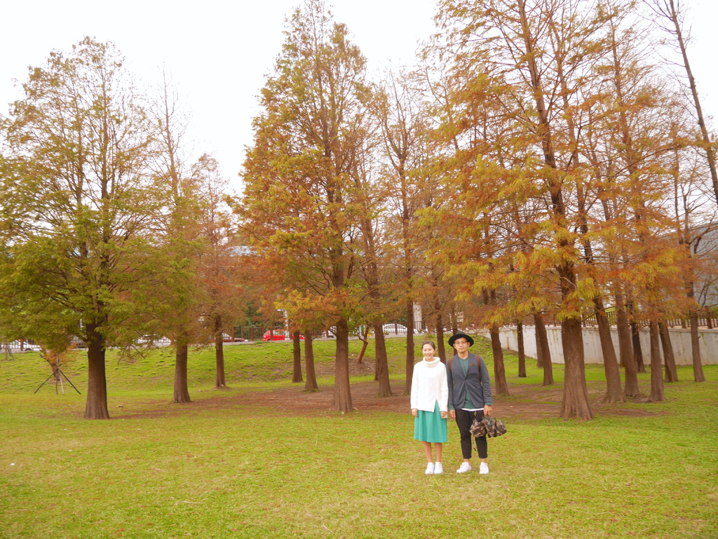 大湖公園13.JPG