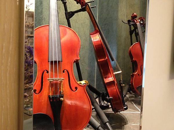 小提琴﹝縮小﹞.jpg