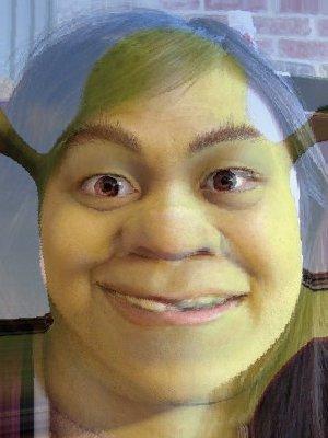 3135636482-c9587a337b-o-jpg--Shrek.jpeg.jpg