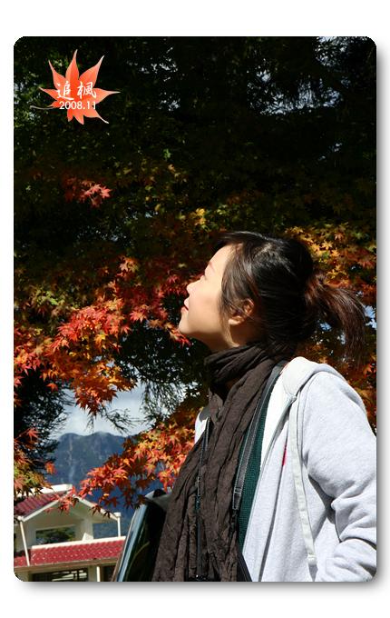 090708_10_福壽山楓葉.jpg