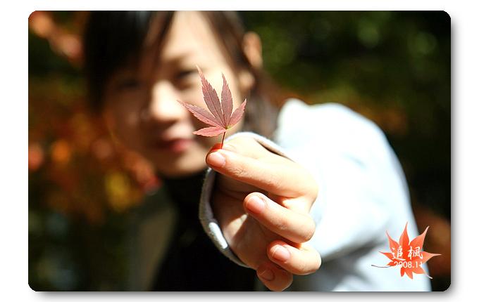 090708_03_福壽山楓葉.jpg