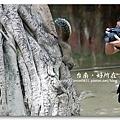 090930_14_孔廟.jpg