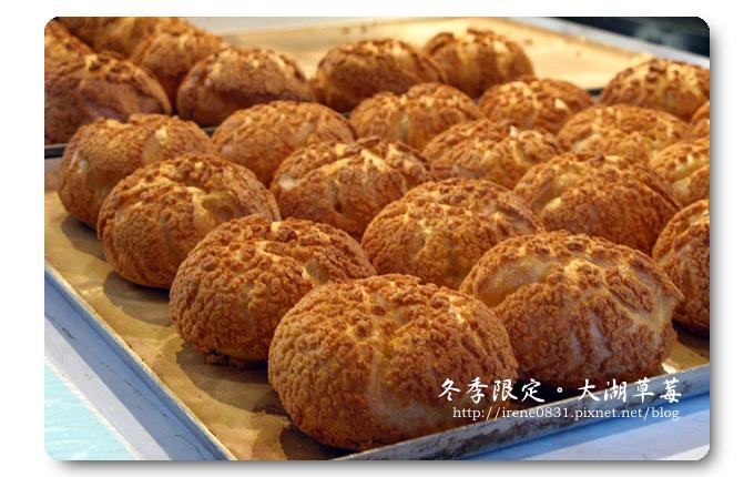 091227_28_大湖草莓.jpg