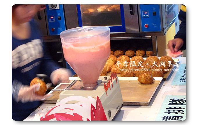 091227_27_大湖草莓.jpg