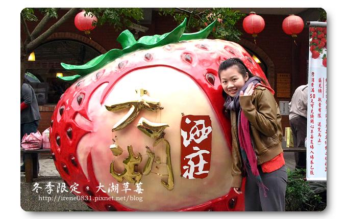 091227_26_大湖草莓.jpg
