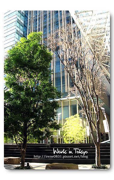 100120_15_Tokyo.jpg