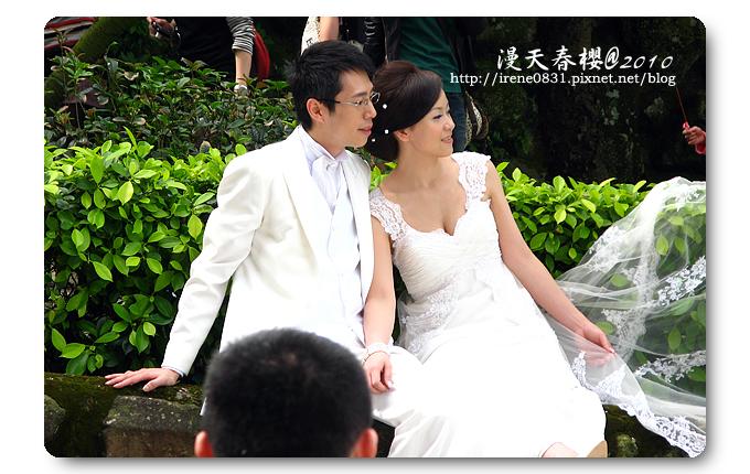100314_17_天元宮春櫻.jpg