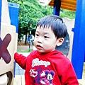 nEO_IMG_DSC02739.jpg