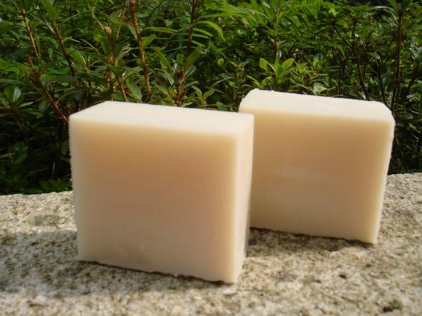檸檬椰子家事皂