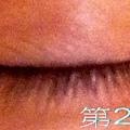 睫毛生長液 006-1
