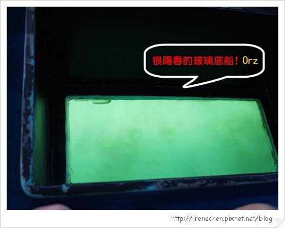 Bali228-玻璃底船的底.jpg