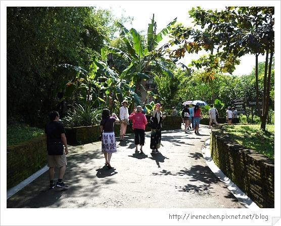 Bali307-野生動物園(園區很熱).jpg