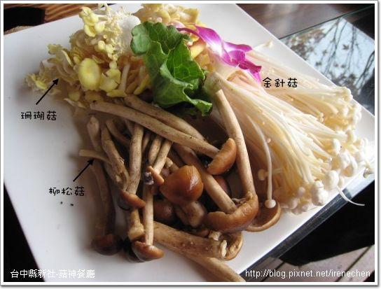 菇神-鮮菇盤2.jpg