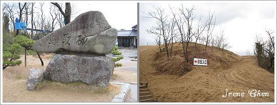 2-08-鳥取沙丘1.jpg