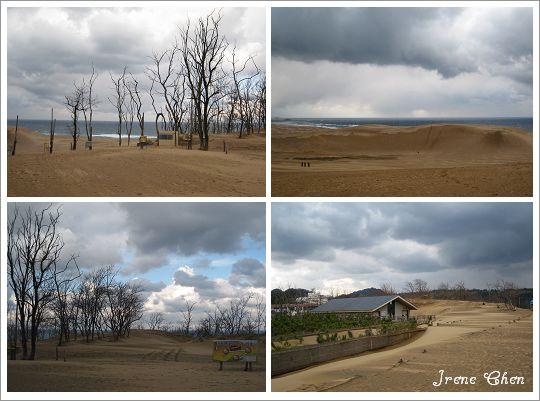 2-08-鳥取沙丘2.jpg