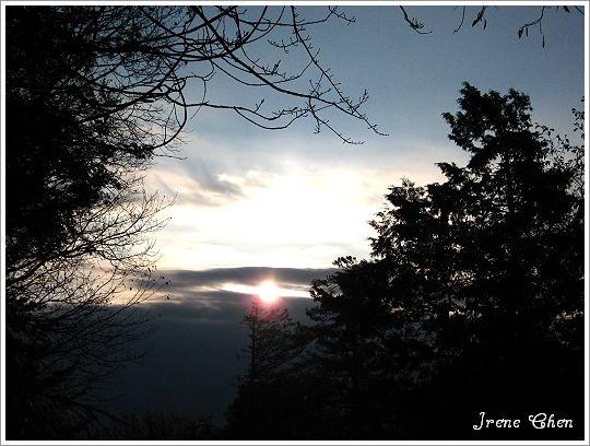 阿里山夜未眠-16祝山2008日出曙光1.jpg