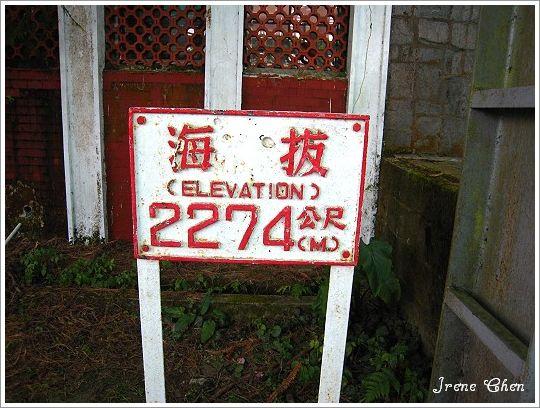 阿里山夜未眠-20阿里山海拔2274標示牌.jpg