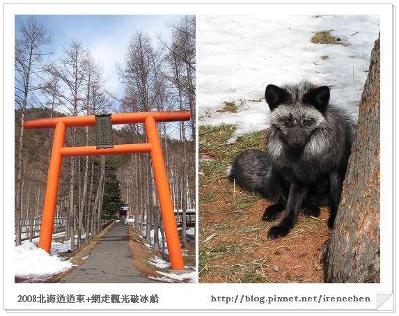 北海道-022北見狐狸村-2.jpg