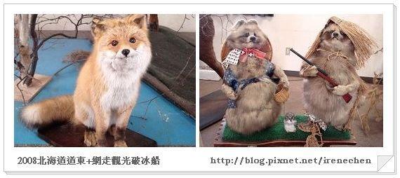 北海道-022北見狐狸村-4.jpg