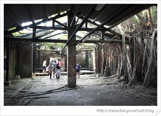 安平樹屋07-屋中有樹樹中有屋.jpg
