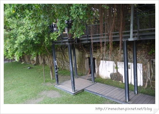 安平樹屋24-由下往上拍.jpg