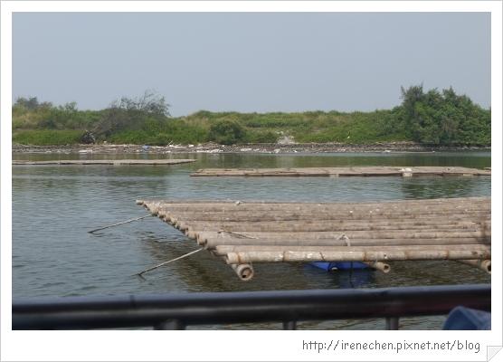 坐船遊台江22-蚵棚.jpg