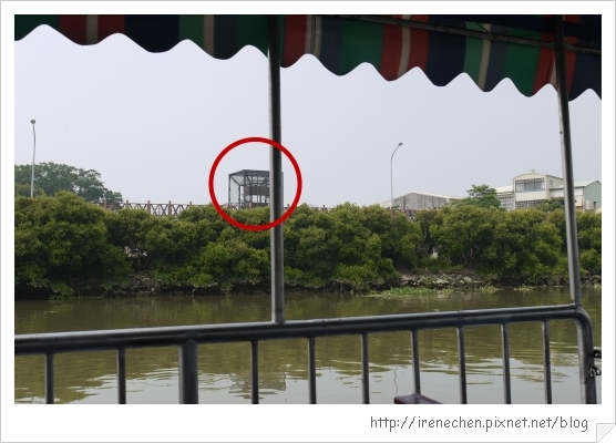 坐船遊台江28-安平樹屋景觀台.jpg