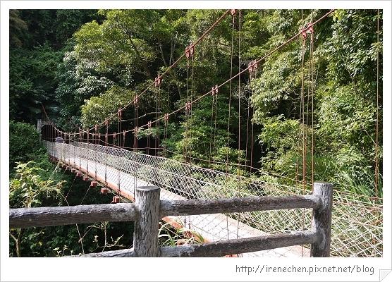 天空步道28-和平吊橋.jpg