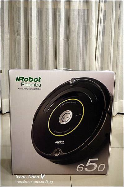 iRobot 650-04.JPG