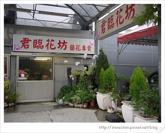台北花卉村68-君臨蘭坊.jpg