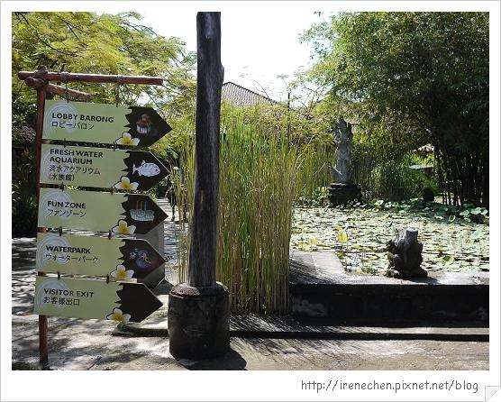 Bali309-野生動物園(繼續前行).jpg