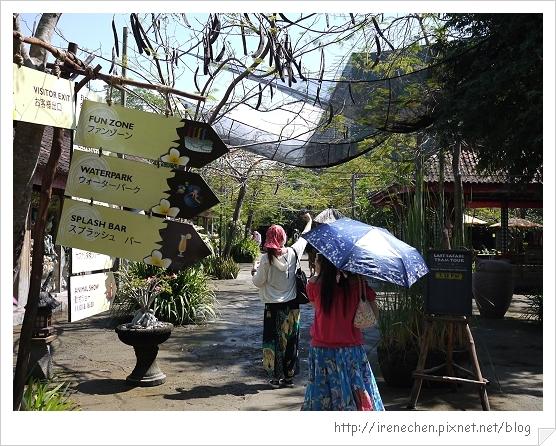 Bali308-野生動物園(前行).jpg