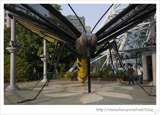 台中植物園.jpg