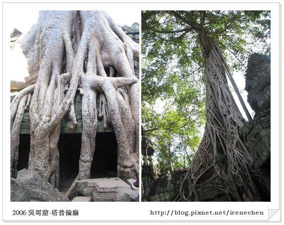 台南2日遊07-安平樹屋VS塔普倫廟.jpg