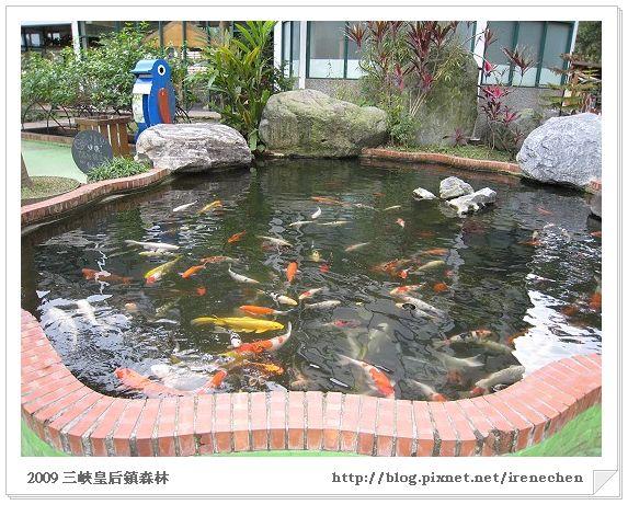 皇后鎮森林03-鯉魚池.jpg
