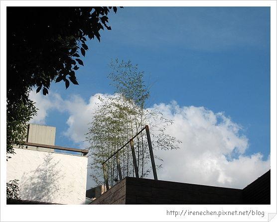 32行館16-這天的藍天.jpg