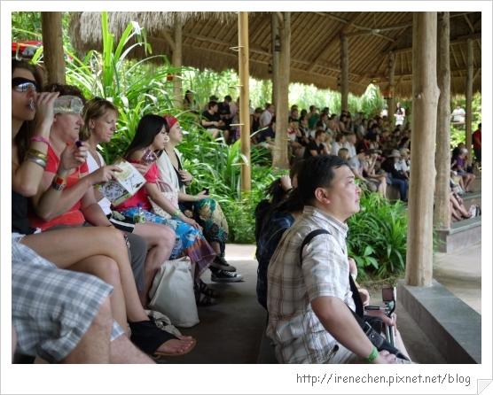 Bali351-野生動物園(人很多).jpg