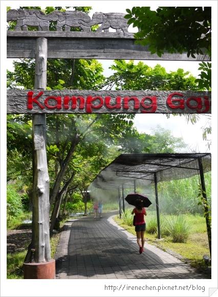 Bali344-野生動物園(往大象區前行).jpg