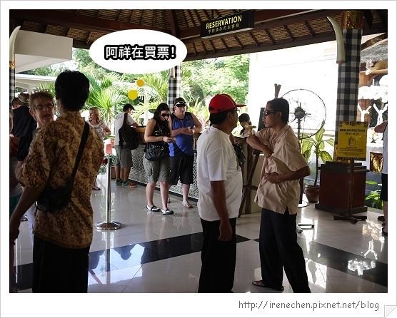 Bali300-野生動物園(阿祥買票).jpg