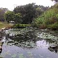 20141228 親泉農莊_2469.jpg