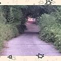 16-06-21-17-27-05-406_deco.jpg