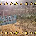 16-06-21-17-25-49-999_deco.jpg