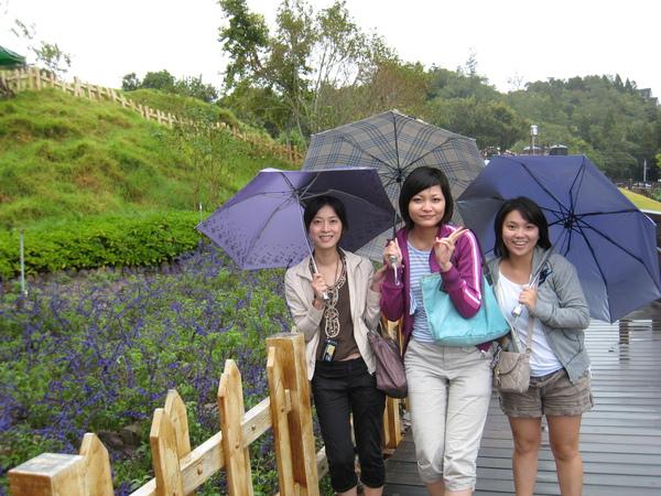 三支雨傘標