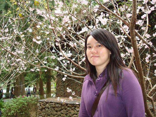是我_與粉紅櫻花 3.JPG