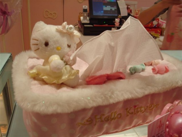 Kitty一景1_面紙盒.JPG
